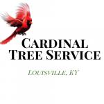 Cardinal Tree Service Louisville